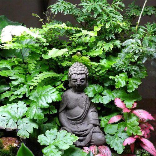 Statue Bouddha pierre