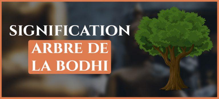 Read more about the article Arbre de la Bodhi : Signification & Histoire