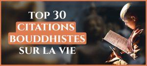 Read more about the article Les plus belles citations bouddhistes sur la vie